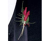 Red Rose Petals Boutonniere in Penetanguishene ON, Arbour's Flower Shoppe Inc