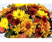 19-99FALL in San Clemente CA, Beach City Florist