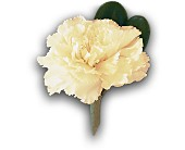 White Carnation Boutonniere in Woodbridge VA, Lake Ridge Florist
