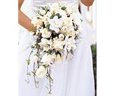 White Cascade Bridal Bouquet in Big Rapids, Michigan, Patterson's Flowers, Inc.