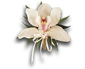 Cymbidium Orchid Corsage in Bedford TX, Mid Cities Florist