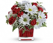Red And White Delight by Teleflora in Edmonton AB, Petals For Less Ltd.