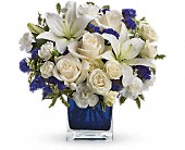 Teleflora's Sapphire Skies Bouquet in Burlington WI, gia bella Flowers and Gifts