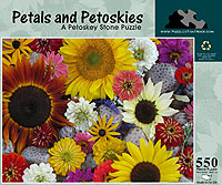 Petals and Petoskies in Big Rapids MI, Patterson's Flowers, Inc.