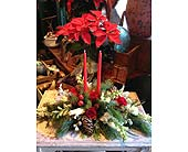 Christmas Centerpiece in Napa CA, Beau Fleurs Napa Valley Flowers