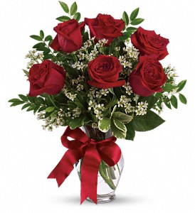 Thoughts of You - 6 Red Roses in Meridian MS, Saxon's Flowers and Gifts