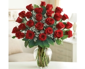 Two Dozen Premium Long Stem Red Roses in Cicero NY, Guignard Florist