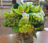 Green Elegance Floral Design in Etobicoke ON, VANDERFLEET Flowers