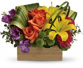 Teleflora's Shades Of Brilliance Bouquet in Rocky Mount NC, Flowers and Gifts of Rocky Mount Inc.