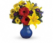 Teleflora's Summer Daydream Bouquet in Rocky Mount NC, Flowers and Gifts of Rocky Mount Inc.