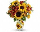 Teleflora's Simply Sunny Bouquet in Highlands Ranch CO, TD Florist Designs