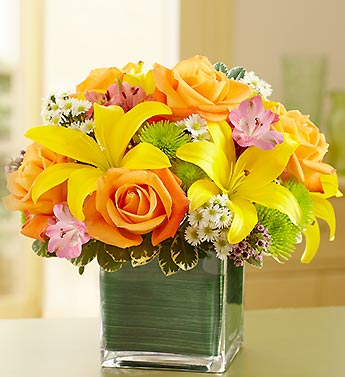 SPRING IN A CUBE in Vienna, Virginia, Vienna Florist & Gifts
