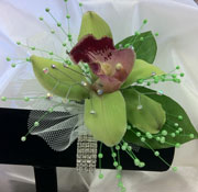 GREEN CYMBIDIUM W/ PEARLS & R.STONES in Ossining NY, Rubrums Florist Ltd.