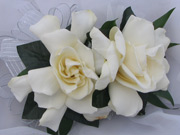DOUBLE GARDENIA CORSAGE in Ossining NY, Rubrums Florist Ltd.