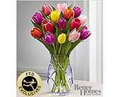 Spring Tulip Bouquet in Burnaby BC, Lotus Flower & Terra Plants