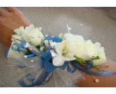 PFD008 in Honolulu HI, Patty's Floral Designs, Inc.
