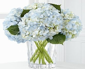 The FTD� Joyful Inspirations� Bouquet by Vera Wang in Highlands Ranch CO, TD Florist Designs