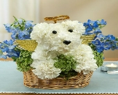 ALL DOGS GO TO HEAVEN in Port Charlotte, Florida, Punta Gorda Florist Inc.