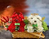 DEVIL AND ANGEL DOG in Port Charlotte FL, Punta Gorda Florist Inc.
