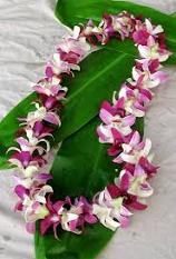 graduation / party leis in Bothell WA, The Bothell Florist