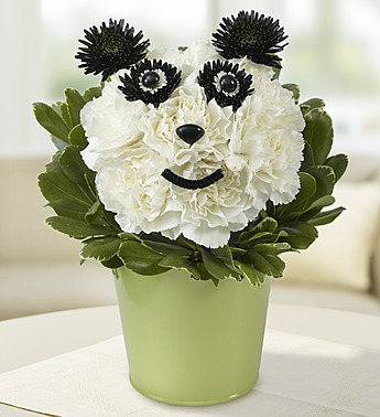 1 800 Flower-Panda Flower Pail in Woodbridge VA, Lake Ridge Florist