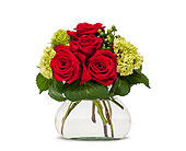 Romance in Methuen MA, Martins Flowers & Gifts