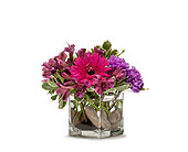 Simply Purple in Methuen MA, Martins Flowers & Gifts