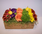 Harvest Rainbow in Wading River NY, Forte's Wading River Florist