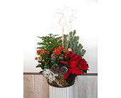 Christmas Garden P & S Style in Dallas TX, Petals & Stems Florist