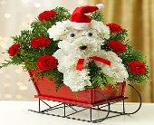 One Dog Open Sleigh in Round Rock TX, Heart & Home Flowers