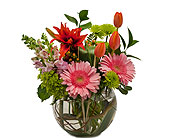 Splendor Surprise in Dover OH, Baker Florist, LLC