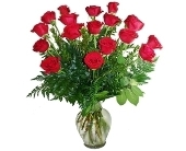 1 1/2 Dozen Red Roses Arranged in Little Rock AR, Tipton & Hurst, Inc.
