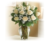 Elegance (White) Long Stem Roses in Bradenton FL, Bradenton Flower Shop