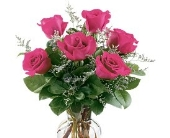 6 Pink Roses Arranged in Utica NY, Chester's Flower Shop And Greenhouses