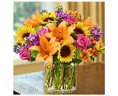 Floral Embrace $59.99-$99.99 in Bradenton FL, Ms. Scarlett's Flowers & Gifts