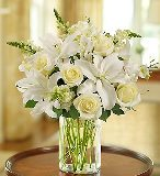 Classic All-White Arrangement in Camp Hill and Harrisburg, Pennsylvania, Pealers Flowers