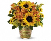 Teleflora's Grand Sunshine Bouquet in Burlington WI, gia bella Flowers and Gifts