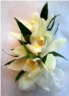 Mini Cymbidium Corsage in Kennett Square PA, Barber's Florist Of Kennett Square