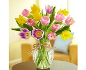 Timeless Tulips in Smyrna GA, Floral Creations Florist