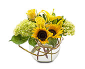 Rays of Sunshine in Amherst NY, The Trillium's Courtyard Florist