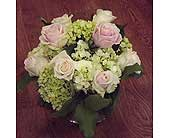 Bowl of Pink Roses & Green Hydrangea in Manhasset NY, Town & Country Flowers