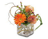 Orange Rocks in Methuen MA, Martins Flowers & Gifts