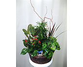 Nesting Bird Basket Planter in Wyoming MI, Wyoming Stuyvesant Floral