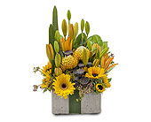 Urban Gift in Bradenton FL, Florist of Lakewood Ranch