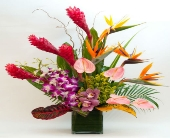Tropical Spice in Hollywood FL, Al's Florist & Gifts