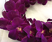 Purple - Double Lei in Sunnyvale CA, Flowers By Sophia