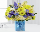 The FTD� Little Miracle� Bouquet � Boy (DELUXE) in Highlands Ranch CO, TD Florist Designs