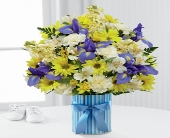 The FTD� Little Miracle� Bouquet � Boy ( LARGE) in Highlands Ranch CO, TD Florist Designs