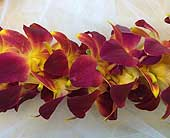 Deep Red, Yellow - Double Lei in Sunnyvale CA, Flowers By Sophia