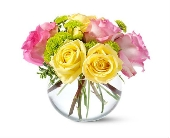 Pink And Yellow Bubble Bowl  in Smyrna GA, Floral Creations Florist